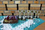 Majstrovstvá Stavebnej fakulty STU  vplávaní študentov – 7. ročník