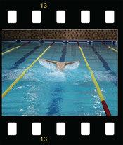 8. ročník Majstrovstiev SvF STU v plávaní